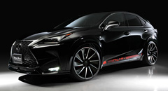 Lexus NX Black Bison Edition